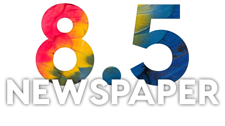 The Newspaper 8.5 update is the most exciting event of 2017 as we are  introducing brand new capabilities that will give you the power to take  your website ...