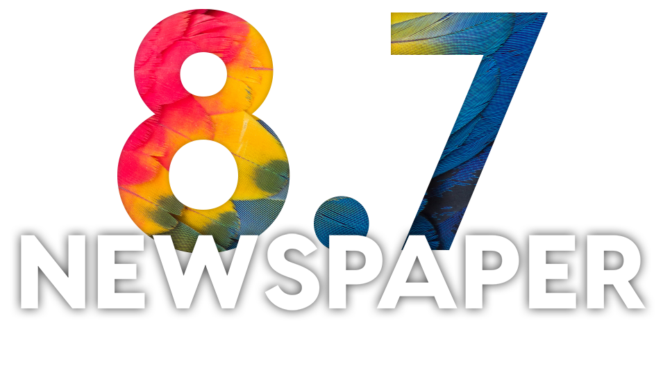 Newspaper WordPress Theme 8.7 Logo