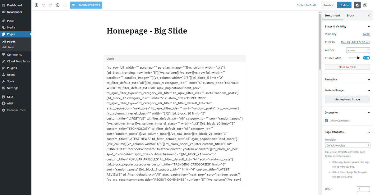 tagDiv AMP Plugin Tutorial - tagDiv support