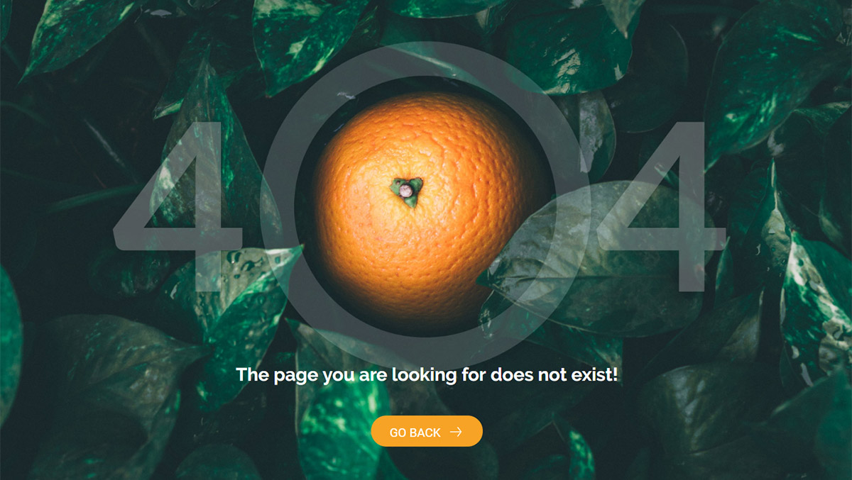 404 Page Templates Orange