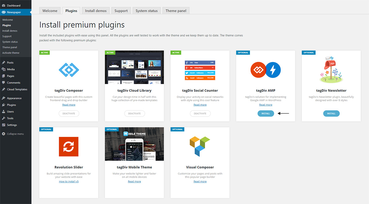 tagDiv AMP plugin and Newspaper Theme