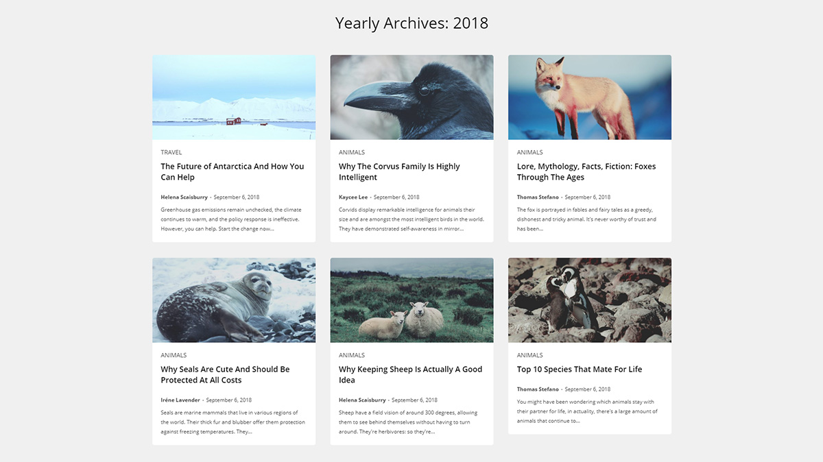 tagDiv Cloud Library Archive Templates