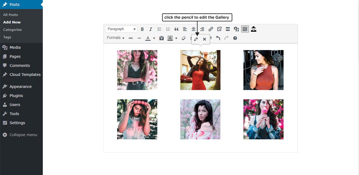 tagDiv Slide Gallery