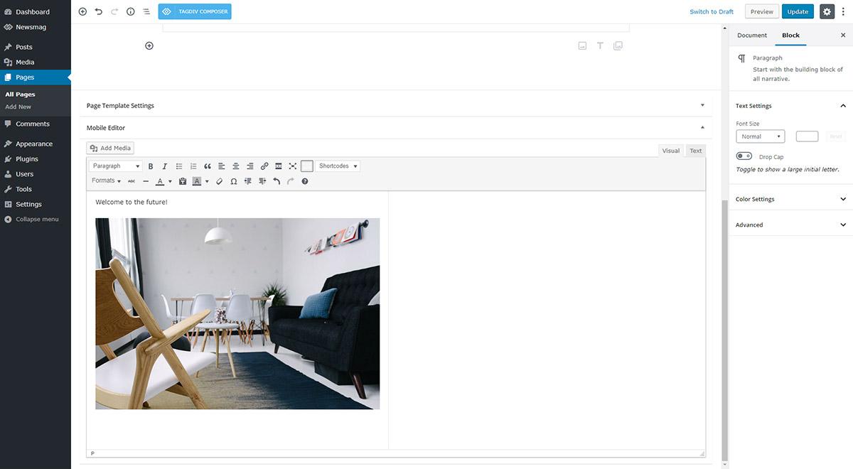 Newsmag Theme: Mobile Theme Adding Custom Content