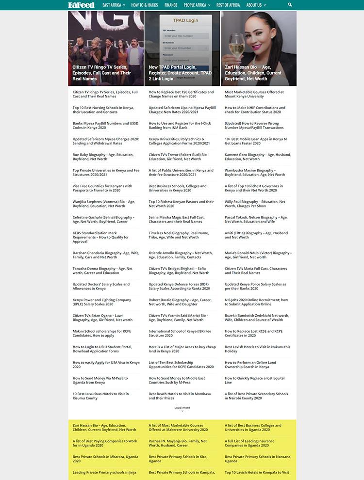 Newsmag WordPress Theme Showcase - EaFeed