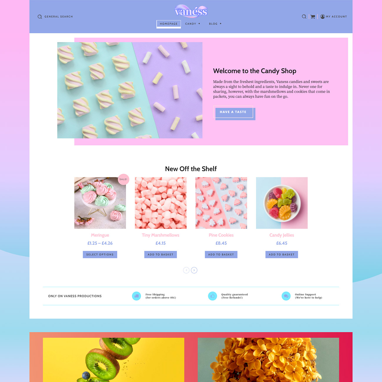 Discover Vaness Shop Prebuilt Website